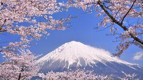 Der Fuji ist der höchste Berg Japans.