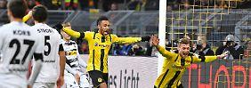 Bayers Elferfluch geht immer weiter: BVB tanzt, Hertha und Hoffenheim furios