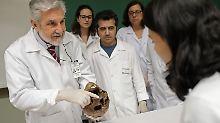 Forensische Lektion in Sao Paulo: Studenten lernen an Mengeles Knochen