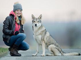 Wolfshund Elsa (Rasse Saarlooswolfhund) und ihre Besitzerin Daria Mathiaszyk.