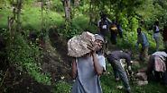 Viele der Bambuti arbeiten hart für die Bahavu-Grundeigentümer, trotzdem behandeln diese sie mit Verachtung.