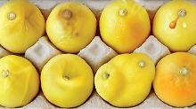 #knowyourlemons: Was Zitronen mit Brustkrebs zu tun haben