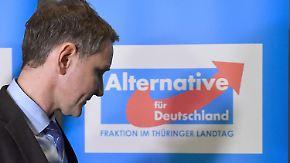 """""""Parteischädigendes Verhalten"""": Höcke darf trotz """"Dresdner Rede"""" in der AfD bleiben"""