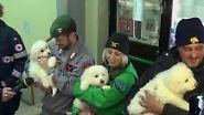 Lawinenunglück in Italien: Helfer retten drei Welpen aus verschüttetem Hotel