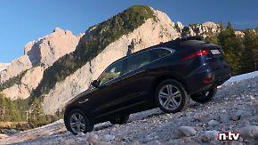 Newcomer gegen Etablierte: Jaguar und Maserati entdecken die Liebe zum SUV