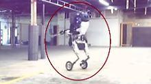Flinkes Stahlgehirn auf Rädern: Roboter lehrt Investoren das Fürchten