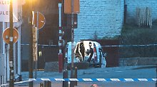Roboter der Polizei öffnen in Brüssel die Hecktür des verdächtigen Kleintransporters.