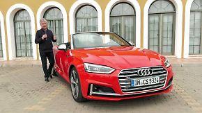 Für Familie und Fahrspaß: Audi A5 und S5 Cabriolets sind eine runde Sache