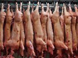 Folge des Pferdefleisch-Skandals: Lebensmittel werden schärfer kontrolliert