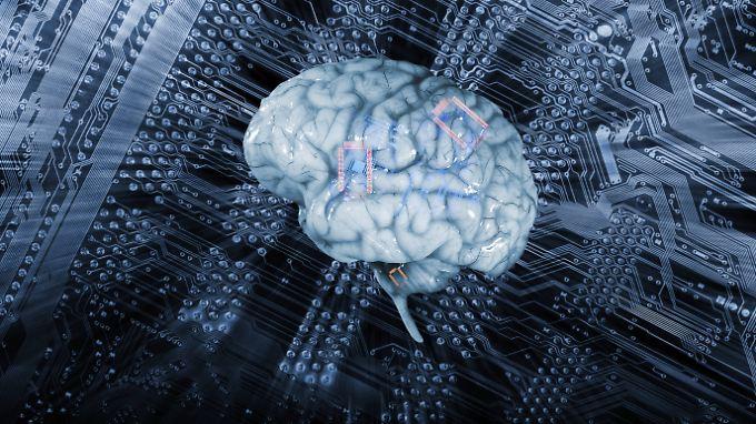 Werden menschliches Gehirn und Computer in Zukunft verschmelzen?