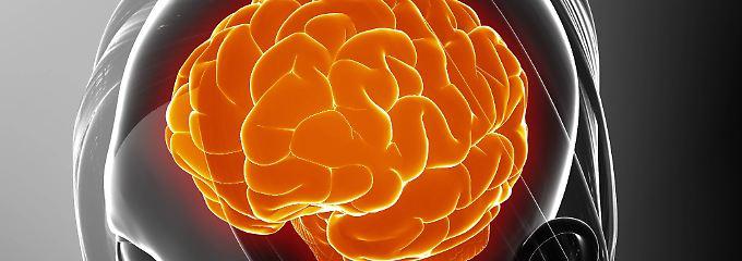 Was könnten andere denken?: Forscher sehen neue Hirnverbindung