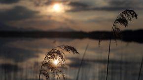 Frühlingswetter am Freitag: Nachts ziehen letzte Schauer ab