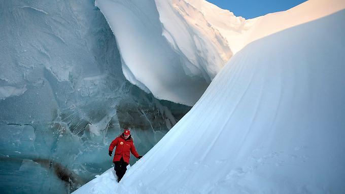 Putin im arktischen Eis: Der Präsident besucht das Franz-Josef-Land im Norden Russlands.