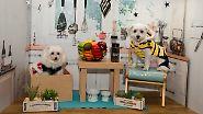 n-tv Ratgeber: Hunde - der Deutschen liebstes Haustier