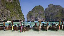 """Korallenbleiche in Maya Bay?: Strand aus """"The Beach"""" ist bedroht"""