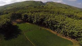 So sah der First des Kendeng-Gebirges aus, als der Kalkstein noch nicht abgebaut wurde.