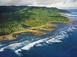 Seltene Arten hautnah: Costa Ricas Natur ist Exotik pur