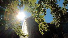 Bestes Sommersonnenwetter: Bei Temperaturen über 20 Grad Celsius ist das Risiko für einen Epilepsie-Anfall nur halb so groß wie an kalten Tagen.
