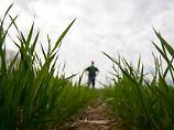 Grünes Licht aus den USA: Dow darf mit Dupont fusionieren