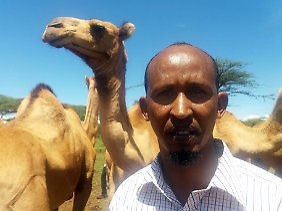 Davis Ikiror versucht seit mehreren Jahren, die Verbreitung von Kamelen zu fördern.