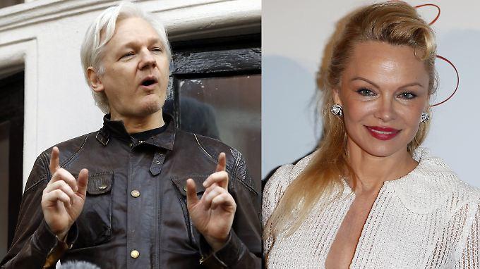 Julian Assange und Pamela Anderson sollen ein Paar sein.