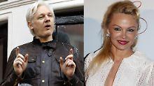 """""""Ich liebe dich"""": Anderson bekennt sich zu Assange"""