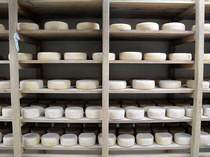 Hier entsteht eine Köstlichkeit: Brocciu-Reifung in der Käserei Ottavi.