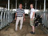 Deutsches Vieh für die Wüste: Händler bereiten Kühe für Katar-Flug vor