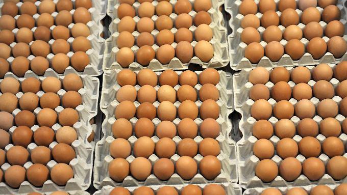 Für Kinder gesundheitsschädlich: Millionen mit Fipronil belastete Eier zurückgerufen