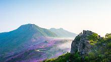n-tv Spezial Südkorea: Südkorea: Das Reiseland stellt sich vor