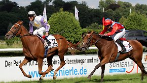 Jubel in der Königsklasse des Pferdesports: Britischer Favoritin geht in Düsseldorf die Puste aus