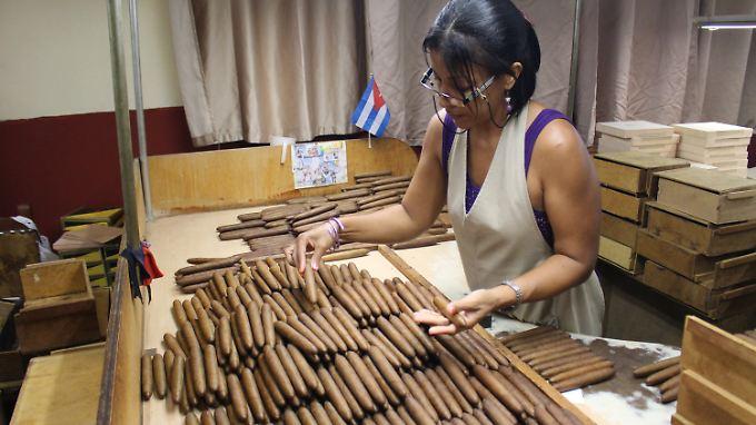Hochwertige Zigarren werden von Hand gerollt, kosten dafür aber auch bis zu 50 Euro das Stück.