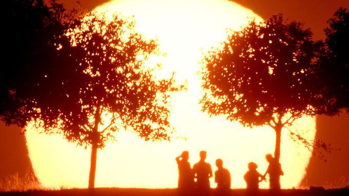 Das vergangene Jahr war US-Klimaforschern zufolge das wärmste seit Beginn der Aufzeichnungen vor 137 Jahren.