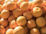 Ernteausfälle in Südafrika: Orangen dürften teurer werden