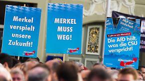 Drittstärkste Kraft im Bundestag: AfD zieht in Umfragen an FDP und Grünen vorbei