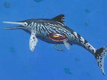 Fundsache, Nr. 1358: Trächtiger Fischsaurier zufällig entdeckt