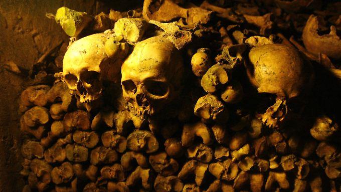 Da kann es schonmal etwas gruselig werden: Schädel in den Pariser Katakomben.