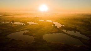 Abschied vom Sommer: Goldener Herbsttag beginnt neblig und kühl