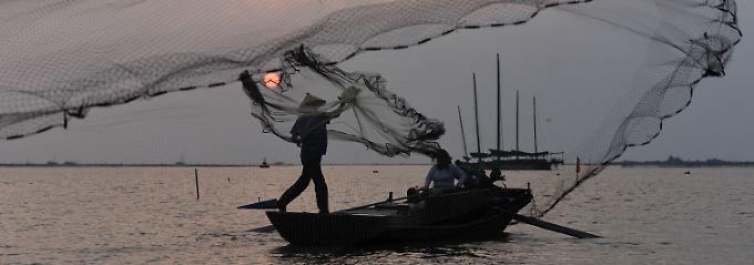 Morgendliches Fischen nach Nachrichten ...