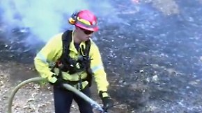 """Kampf gegen Waldbrände: Trump: """"Regierung steht an der Seite Kaliforniens"""""""