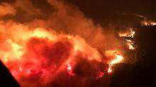 Mehr als 20 Tote in Kalifornien: Kein Ende des Feuersturms in Sicht