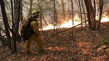 Feuer in Kalifornien: Viele Cannabis-Bauern stehen vor dem Ruin