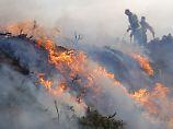 Spanische Feuerwehrleute kämpfen in Galizien gegen die Flammen.