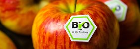 Konkurrenz von Supermärkten: Naturkosthandel-Boom ebbt wieder ab