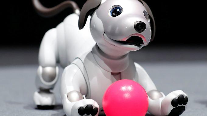 """Mit Kamera in der Nase: Sony stellt neuen Roboterhund """"Aibo"""" vor"""
