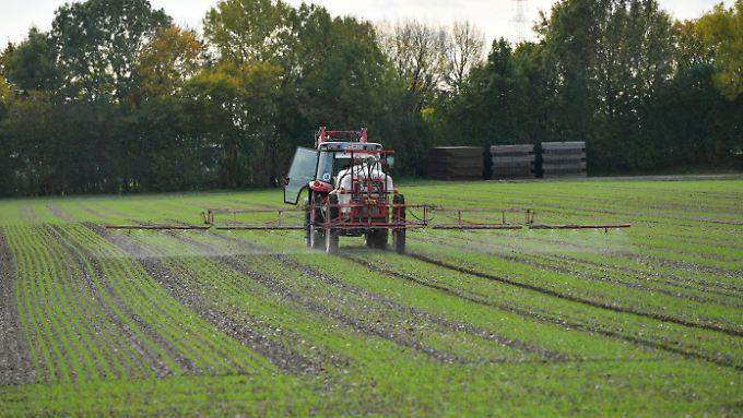 Glyphosat ist ein beliebtes Pestizid in der Landwirtschaft. Die Weltgesundheitsorganisation stuft es als wahrscheinlich krebserregend ein.