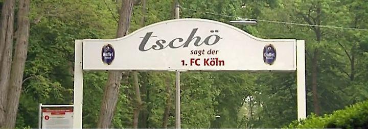 """Köln rauscht dem Abstieg entgegen: """"Gibt nicht die üblichen Anzeichen eines Krisenklubs"""""""