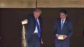 Futter bei die Fische: Trump erntet Spott - diesmal zu Unrecht