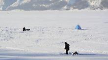Auch im Eis: Einzeller gedeihen unter widrigsten Bedingungen.
