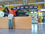 Bis zum Sommer 2018 soll auf  dem Flughafen Palma einiges verbessert werden.